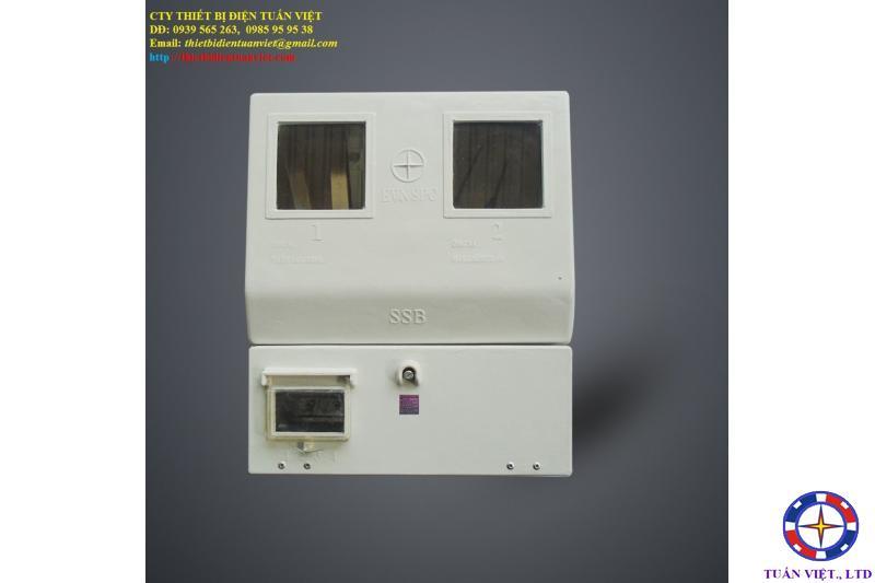 Hộp Bảo Vệ 2 Công Tơ 1P, Composite, Ngoài Trời